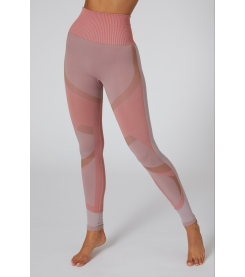 My Goddess Seamless Legging