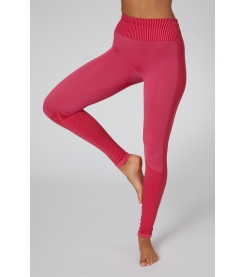 Shake It Seamless Legging