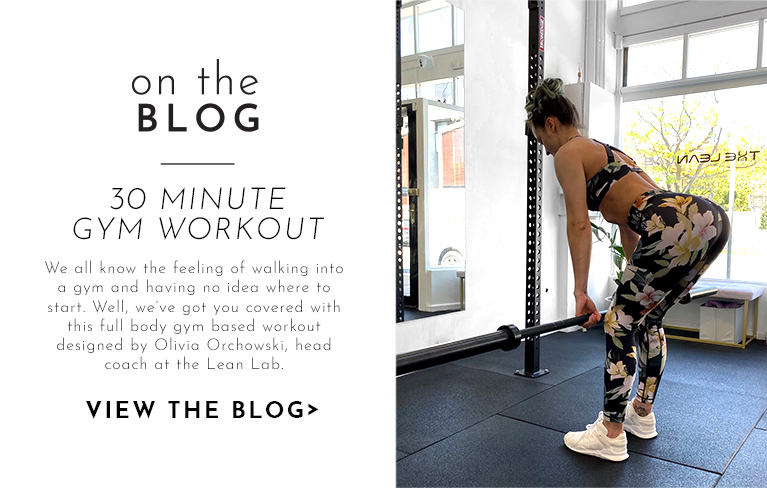 30 MINUTE GYM WORKOUT